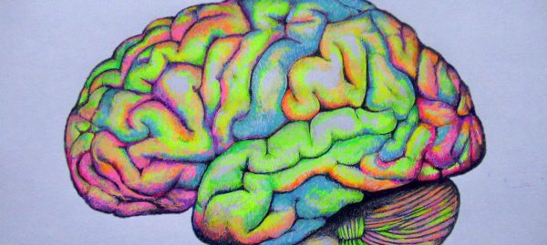 Beautiful brains: science meets art