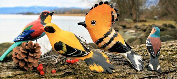 Rhymetime: Birds